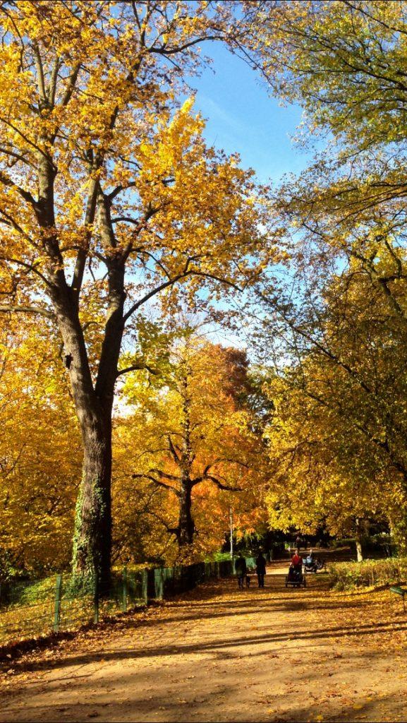 Herbst by KathieKreativ